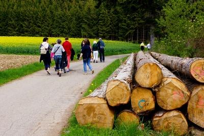 Wanderer gehen auf unasphaltierter Straße in Richtung Wald. Foto: Rainer Sturm / pixelio.de