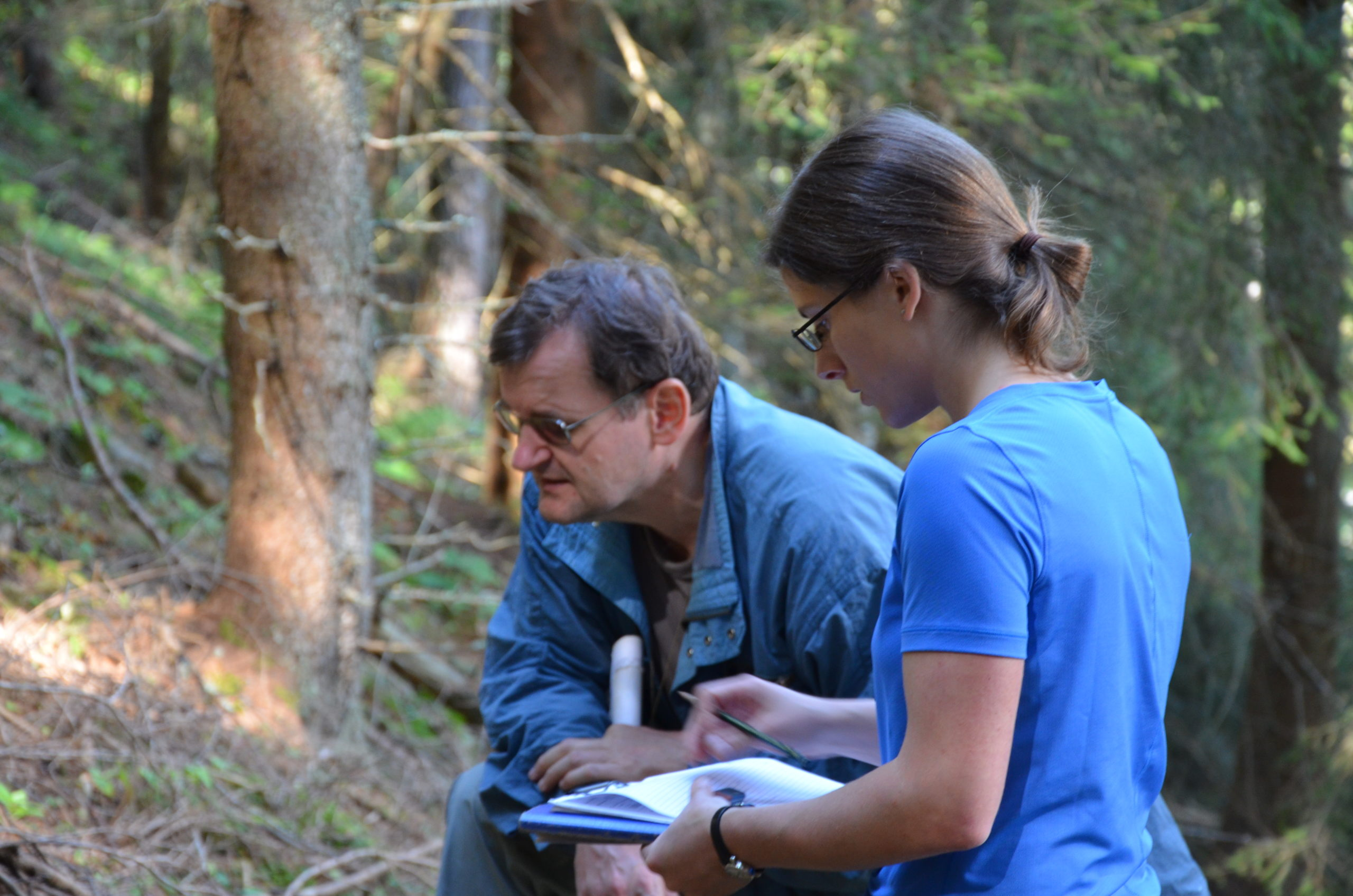 Standortskartierer stehen im Wald, blaue T-Shirts