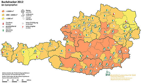 Österreichkarte mit orangen Feldern für Borkenkäferschadflächen