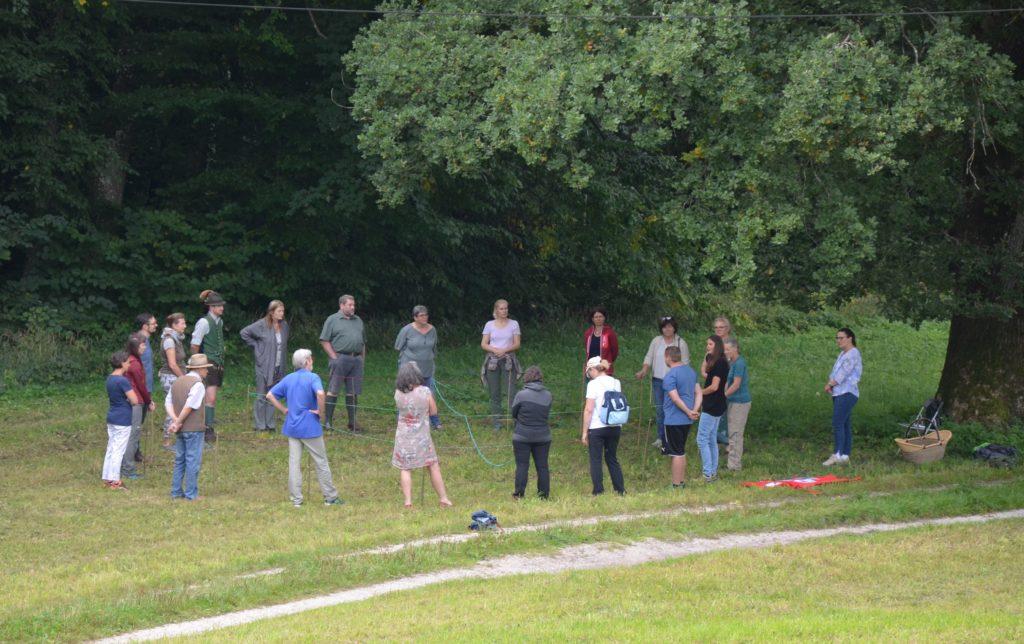 Menschen stehen für eine Übung auf einer Wiese im Kreis