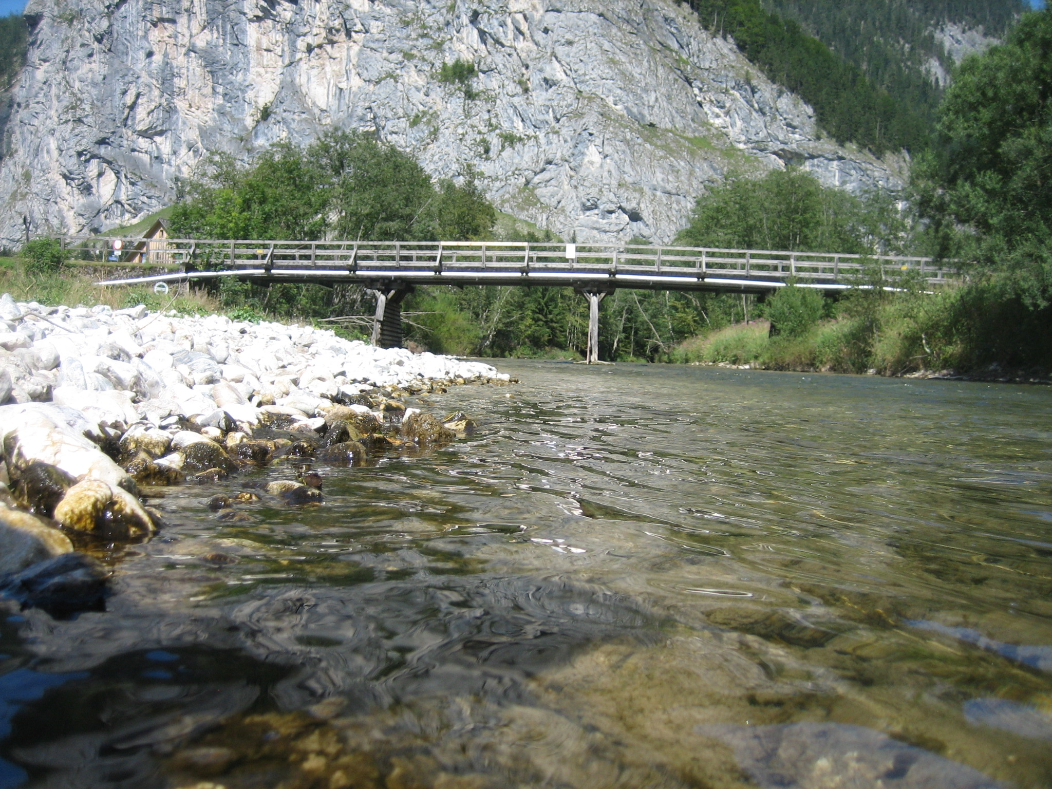 Die Erlauf in Niederösterreich, Blick auf Bachbett und Fluss