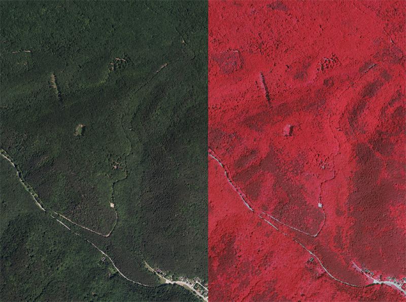 Vergleich Echtfarben- Falschfarbeninfrarotbild CIR dunkelrot=Nadelbäume hellrot=Laubbäume
