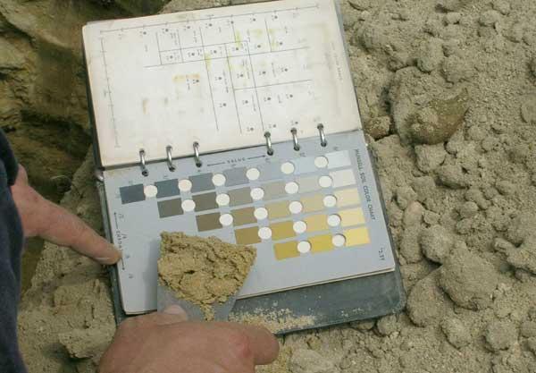 Blick auf einen Bestimmungsfächer für Bodenfarben