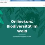 Neuer Onlinekurs zu Biodiversität im Wald