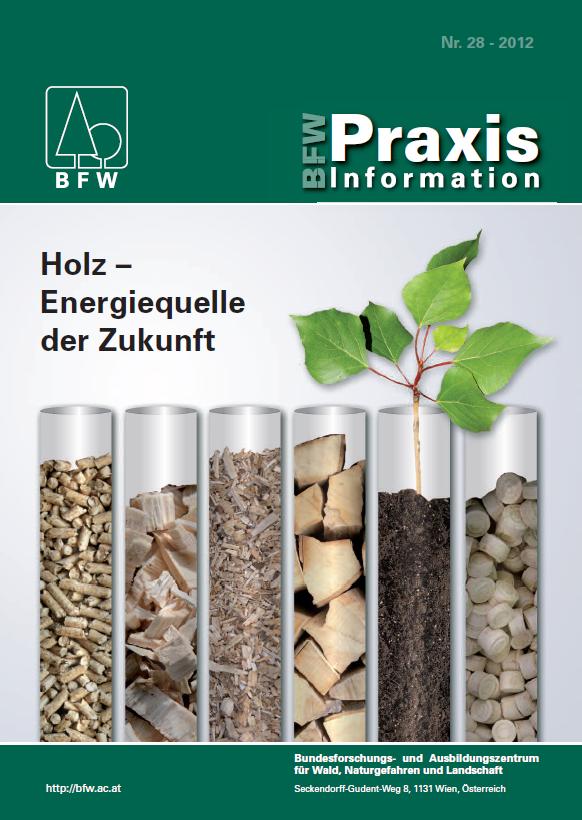 verschiedene Formen der Bioenergie wie Hackschnitzel, Brennholz, Pellets in Gläsern